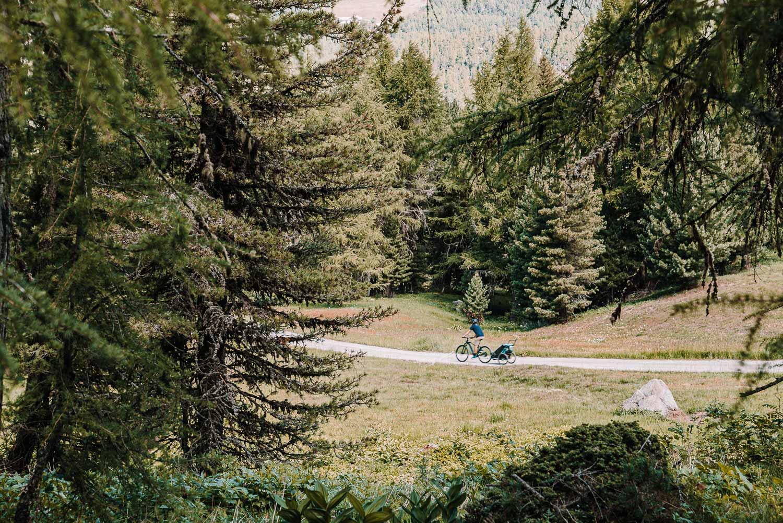 Vater auf dem Velo mit Sohn im Anhänger fährt durchs die Wälder des Engadin